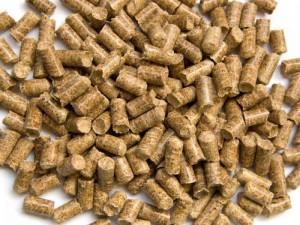 Опилки из лиственницы