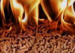 пеллеты топливные екатеринбург